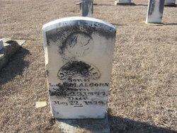 J. Leslie Alcorn