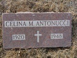 Celina M Antonucci