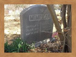 Rev Newton W McMillan