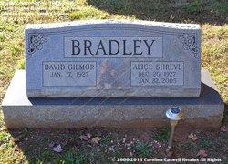 Alice <I>Shreve</I> Bradley
