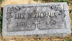 Lily N. Picraux