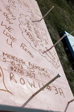Meredith Elaine <I>Hobson</I> Fleming