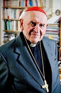 Cardinal Julien Ries