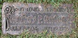 Audrey P Antony