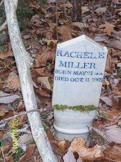 Rachel E Miller