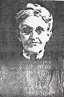 Jane Wilson <I>McClaren Henry</I> Fulton