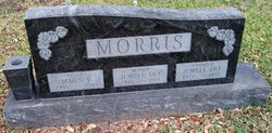 Jewell Dee <I>Kelley</I> Morris