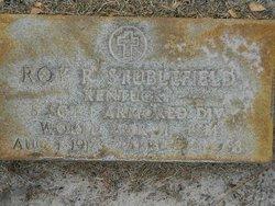 Roy R Stublefield