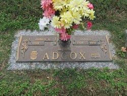 Louise Adcox
