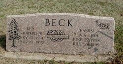 Olivia Leah <I>Hanks</I> Beck