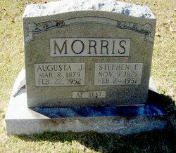 Stephen E Morris