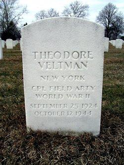 Theodore Veltman
