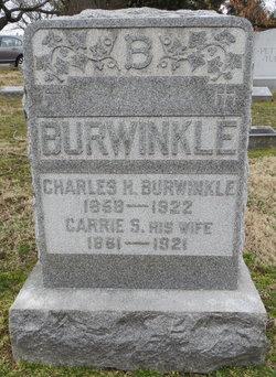 Carrie S <I>McGee</I> Burwinkle