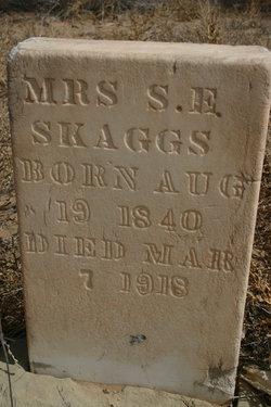 Mrs S. E. Skaggs