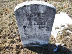 Mary E. <I>Neely</I> Lilly