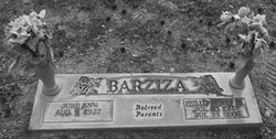 Phillip Henry Barziza, Jr