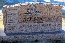 Francis Viola <I>Granada</I> Acosta