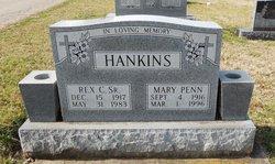 Mary Pruitt <I>Penn</I> Hankins