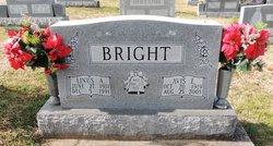 Avis <I>England</I> Bright