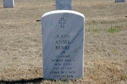 John Ansel Berry