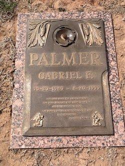 """Gabriel Franklin """"Gabe"""" Palmer"""