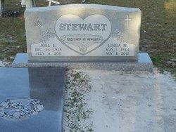 Joel E. Stewart