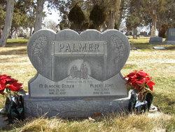 Albert John Palmer