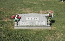 Marlyn A. <I>Shaneyfelt</I> Wilson