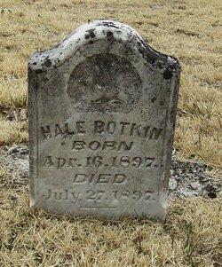 Hale Botkin