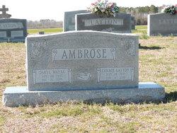 Daryl Wayne Ambrose