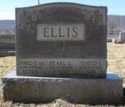 David Lee Ellis