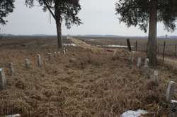 Fulton County Poor Farm Cemetery