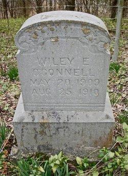 Wiley E O'Connell