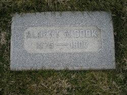 Albert N Cook