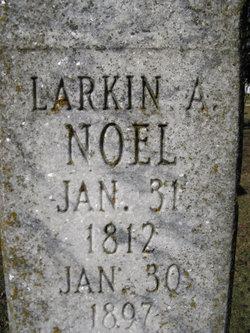 Larkin Alexander Noel