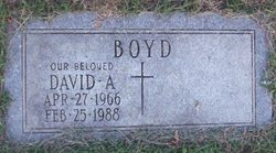 David A. Boyd