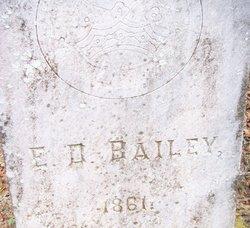 Edward D Bailey