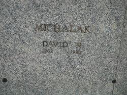 David N Michalak