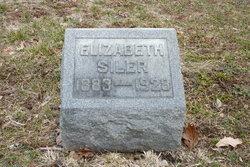 """Hannah Elizabeth """"Elizabeth"""" <I>Goodhall</I> Siler"""