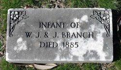 infant Branch