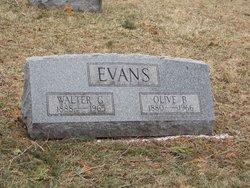 Olive B. Evans