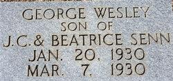 George Wesley Senn