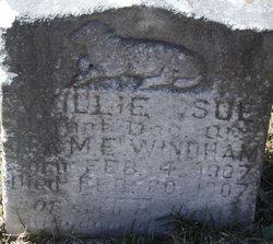 Willie Sue Windham