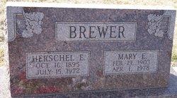 Mary E Brewer