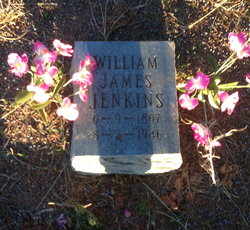 James William Jenkins