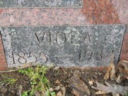 Viola <I>Razer</I> Julian