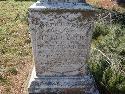 Lucy A. <I>Wyatt</I> Trader