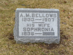 Sophronia Bellows