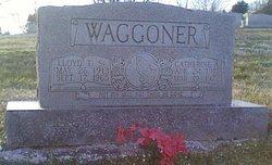 Catherine Albertine <I>Weicks</I> Waggoner