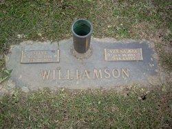 Steve A Williamson